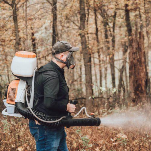 Spider Pest Control - Exterminator in Nashville - Preventative Pest Control - Certified Pest Control